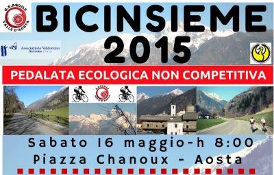 bicinsieme 2015